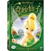 迪士尼動畫系列限期特賣 奇妙仙子 DVD (購潮8)