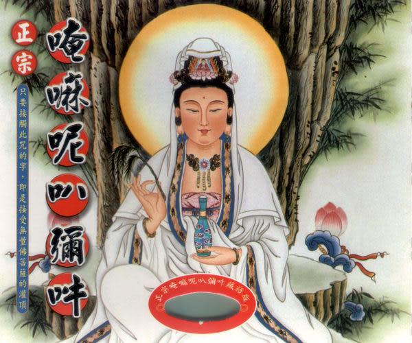 正宗唵嘛呢叭彌吽 藏語版 CD (音樂影片購)
