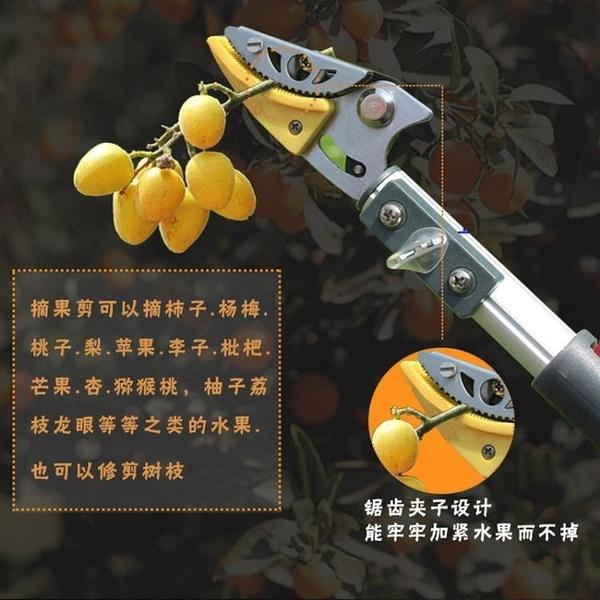 園藝剪 高枝剪摘果器鋸樹枝摘果剪刀園藝高空果樹修枝剪伸縮高枝剪采果器T