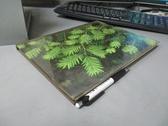 【書寶二手書T9/動植物_YCF】Evergreens