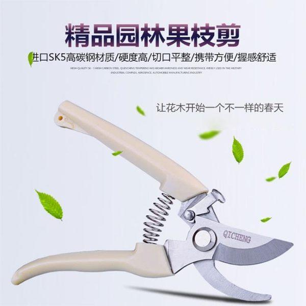 修剪樹枝剪刀園林工具剪刀修枝剪粗枝果樹修花剪刀花藝剪園藝剪刀igo  K-shoes