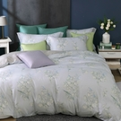 鴻宇 雙人特大床包薄被套組 天絲300織 莎漫 台灣製 T20107