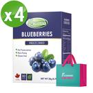 Frenature富紐翠-藍莓翠鮮果凍乾 20g (冷凍真空乾燥水果乾) 4盒組(附提袋)