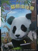 挖寶二手片-B33-104-正版DVD*動畫【哈啾 貓熊出任務】-英語發音-