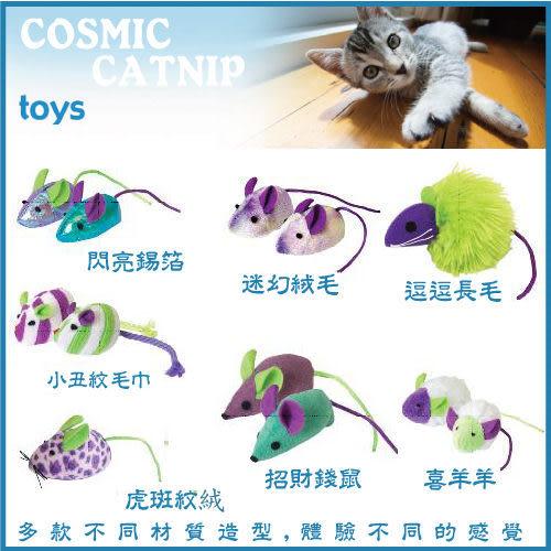 *WANG*美國 Ourpet s Durapet《爆走狂貓 -小老鼠》go! cat go! 貓咪天然玩具系列
