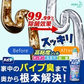 KAO 花王Haiter 排水管清潔劑500g 清潔除臭消臭除菌排水管 水管