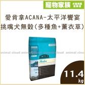 寵物家族-愛肯拿ACANA-太平洋饗宴 挑嘴犬無穀配方(多種魚+薰衣草)11.4kg