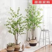 仿真樹 北歐風仿真綠植日本吊鐘馬醉木植物裝飾假樹室內客廳落地盆栽擺件 薇薇MKS