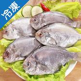 冷凍肉魚5-6尾裝500G±10%/包【愛買冷凍】