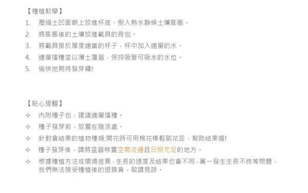Chuppon小植栽/海豹/羅勒【聖新陶芸】