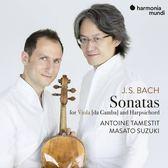 【停看聽音響唱片】【CD】塔梅斯提 / 鈴木優人 / 巴哈:維奧爾琴與大鍵琴奏鳴曲 (中提琴版)