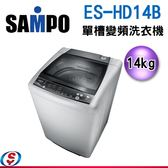 【信源電器】14公斤 SAMPO聲寶 單槽變頻洗衣機 ES-HD14B(G3)
