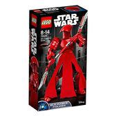 【LEGO 樂高積木】星際大戰系列-帝國皇家禁衛軍 LT-75529