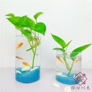 魚缸辦公桌面水培植物花瓶魚缸圓柱形【櫻田川島】