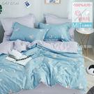 《DUYAN竹漾》100%精梳純棉雙人床包被套四件組-草尼馬想你