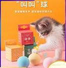 寵物玩具 貓咪玩具逗貓球貓薄荷發聲磨牙耐咬自嗨解悶神器小貓幼貓寵物用品
