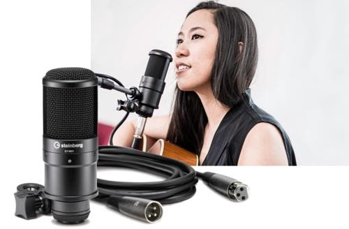 【敦煌樂器】Steinberg UR22 MKII STUDIO PACK 錄音介面組