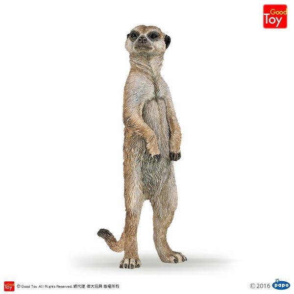 【Good Toy】法國 PAPO 50206 野生動物 貓鼬(站姿) Standing Meerkat
