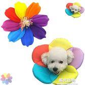 新款寵物花朵保護頭套棉質伊利莎白圈貓狗脖套防護罩防抓防舔傷口 陽光好物