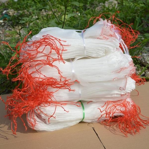 防鳥網 10個裝防蟲網防蟲袋 尼龍網袋 瓜果防果蠅防鳥袋濾網浸種 葡萄水果套袋 美物 618狂歡