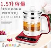 養生壺 全自動加厚玻璃多功能煮茶器電熱燒水壺花茶壺煎藥壺 童趣