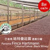巴拿馬 哈特曼莊園 酒香日曬 咖啡豆(半磅)➤藍莓花香 草莓酒釀氣息 扎實飽滿★送-莊園濾掛