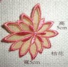 織帶蕾絲邊~用於衣服 窗簾 桌巾 抱枕....