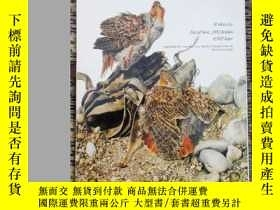二手書博民逛書店Raymond罕見Chin,The Bird Paintings