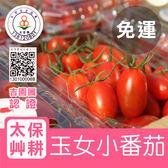 太保艸耕玉女小蕃茄4盒免運組(600g/盒X4)