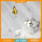 摸金家電動蝴蝶逗貓棒 貓貓玩了精神抖擻 一米陽光