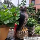 驅鳥器 花果園陽台櫻桃桔柚柿子蘋果番茄樹仿真老鷹驅鳥嚇鳥趕鳥神器 交換禮物
