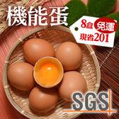 SGS認證-俊韋機能蛋8盒免運組