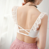 小可愛 蕾絲 流蘇 鏤空 美背  細肩帶 小可愛 內衣