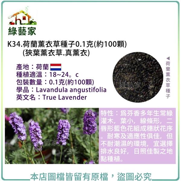 【綠藝家】K34.荷蘭薰衣草種子0.1克(約100顆)(狹葉薰衣草.真薰衣)