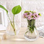 透明玻璃瓶水培植物容器綠蘿養花小花瓶干花插花客廳擺件裝飾花盆『新佰數位屋』