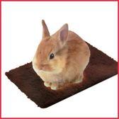 *KING WANG*《日本MARUKAN》兔用快速暖墊-棕色 MR-828 / 保暖墊寒冬必備【現貨】