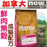 【 培菓平價寵物網 】now鮮肉無穀成貓糧8磅3.63kg