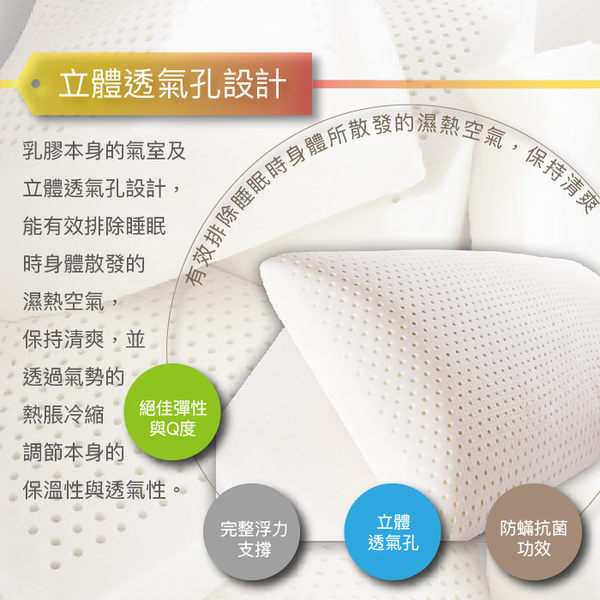 枕頭 100%HT天然乳膠枕 標準型 高12cm Q彈型 SEK 防蹣 抗菌 Best寢飾