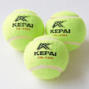 訓練網球 3只筒裝