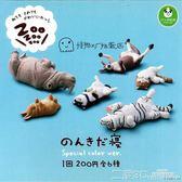 扭蛋 熊貓之穴 休眠動物園 睡覺第4彈異色版 tomy扭蛋 二度3C