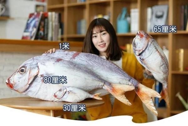 【60公分】新款鹹魚抱枕 海中生物 仿真系列 絨毛娃娃 公仔 玩偶 生日禮物 擺設裝飾布置