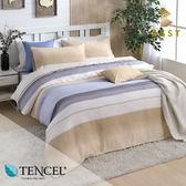 天絲床包兩用被四件式 特大6x7尺 佩吉  100%頂級天絲 萊賽爾 附正天絲吊牌 BEST寢飾