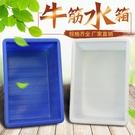 水桶 加厚牛筋水箱長方形塑料水箱家用水缸大號水桶水產養殖養魚盆圓桶 米家WJ