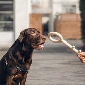 寵物玩具 pidan狗玩具鑰匙款狗咬膠磨牙玩具中小型犬狗狗用品耐咬互動玩具