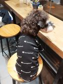 狗狗衣服冬裝泰迪雪納瑞博美比熊吉娃娃小貓咪寵物衣服加厚小型犬 全館免運