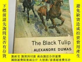 二手書博民逛書店黑色鬱金香罕見大仲馬 The Black Tulip 有插圖Y2