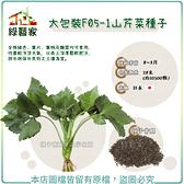 【綠藝家】大包裝F05-1山芹菜種子28克(約10500顆)