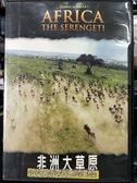 影音專賣店-P07-524-正版DVD-電影【非洲大草原】-