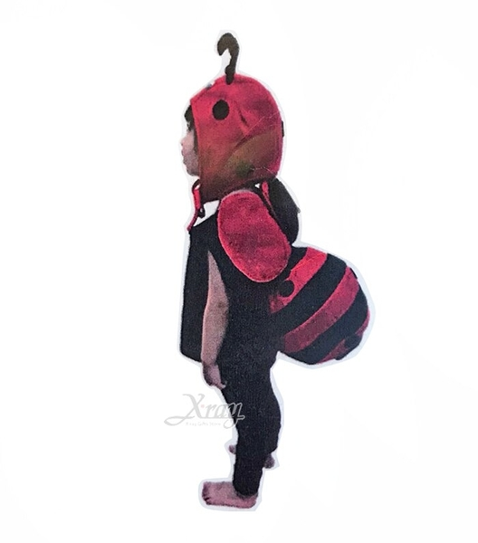 蓬蓬裝-瓢蟲球球裝(附頭套),昆蟲裝/慶生會/活動/萬聖節/聖誕節/兒童變裝,X射線【W390024】