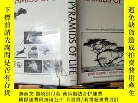 二手書博民逛書店PYRAMIDS罕見OF LIFE Illuminations of Nature s Fearful Symme